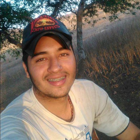 ROBERTO ALVES