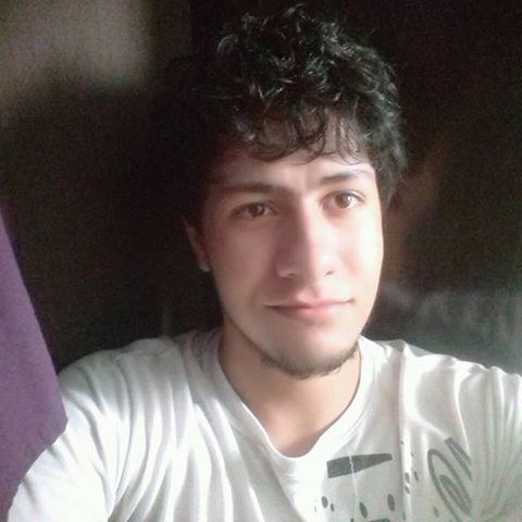 Pedro Sebastião Pereira Amaro