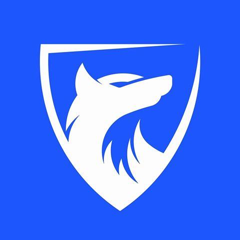 Blue-Wolf Capital Trading