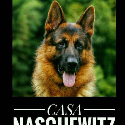 Canil Casa Nasguewitz